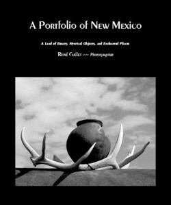 A Portfolio of New Mexico  A Collection of  Images of New Mexico    Published July, 2009  (80 pages -- premium luster paper -- monochrome)  Preview this book now