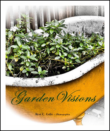 ' Garden Visions '   In this image collection, through creative and selective editing and enhancement of my images, I have attempted to create and present a view of the essence of these garden objects and scenes in a way that represents not only their physical beauty but also the emotional, physiological and apparent spiritual essence of these objects and their contributions to the whole   Published January, 2012   (80 pages, museum quality, luster paper, monochrome )   Preview this book now