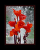 """Blooming Fountain"" by Warren Ayer in Misquamicut, Rhode Island"