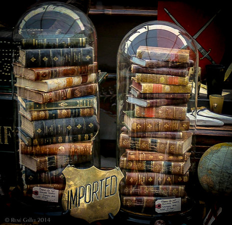 "<center><h2>'Books Under Glass'</h2> Round Top, Texas -Antique Faire-  An Open Edition Matted 16""x 20""  Luster  paper (12mil)  ©2014 R. Gallet  </center>"