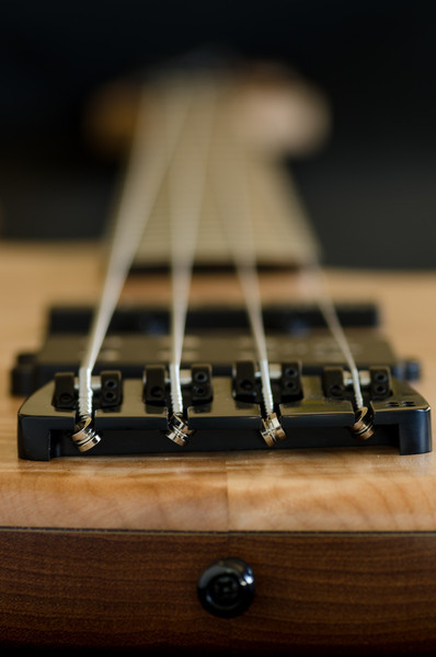Sandberg Bass (02)