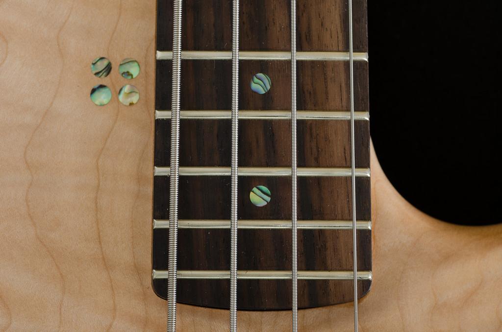 Sandberg Bass (03)