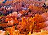 Bryce Canyon NP - Queen's Garden/Navajo Trail (2007-09-30)
