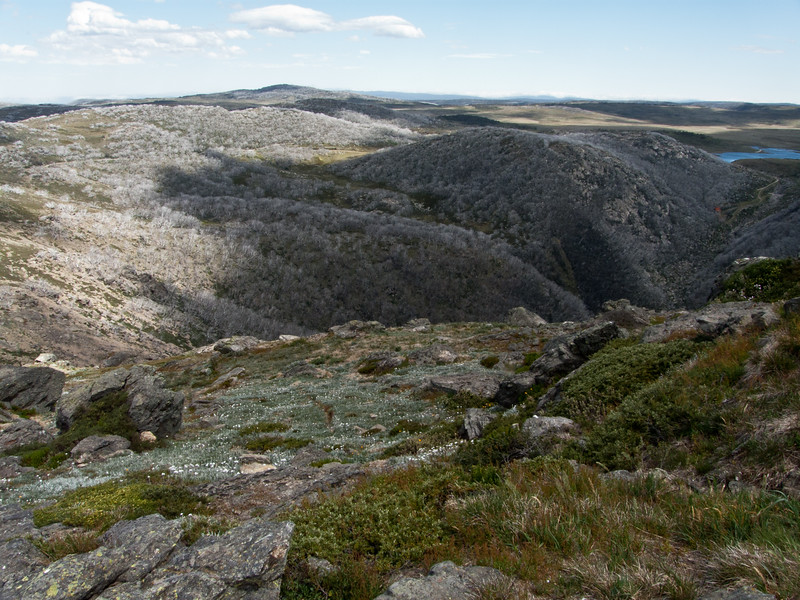 Above the tree line, Bogong High Plains, Victoria