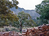 Almost a Heysen Painting, Flinders Ranges