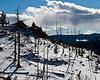 Burned Hillside: Mount Falcon Park, Jefferson County, CO