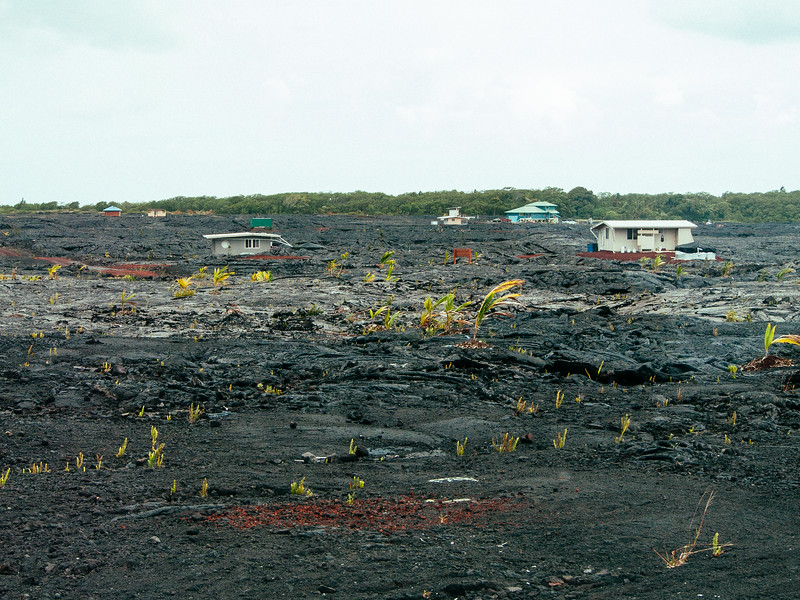 Big Island, Hawaii. Adaptable. Homes can be picked up and moved if a lava flow is coming.