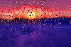 The sun makes an appearance at sunset after a rainy day. Abstraction made by narrow depth of field not Photoshop.