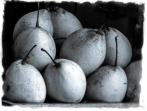 'Asian Pears'