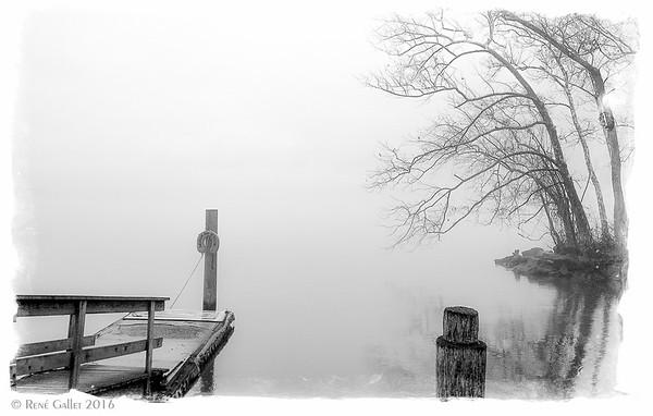 River Morning Fog