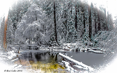 December_Flood_08