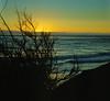 <center><h2>'Coastal Evening'</h2>Del Mar, CA </center>