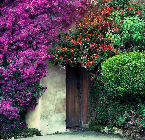 <center><h2>'Rectory Door'</h2>Carmel Mission, Carmel, CA <em></center>