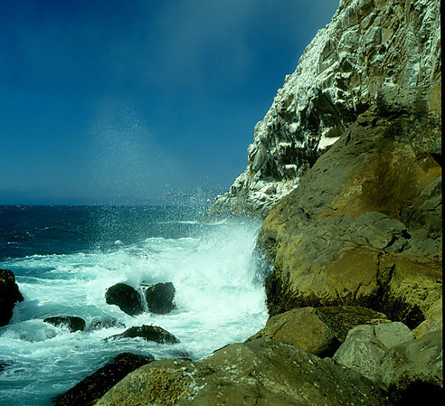 <center><h2>'Pacific Grove Coast'  </h2>Pacific Grove, CA </center>
