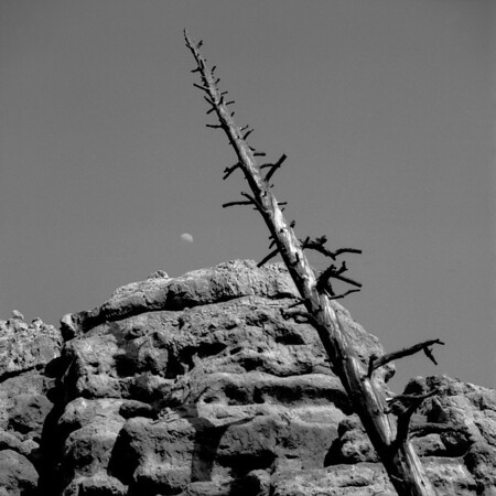 <center><h2>'Moon Rise'</h2>Red Rock CAnyon, NV</center>