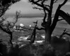 <center><h2>'Monterey Bay View'</h2>Pacific Grove, CA</center>
