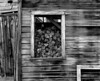 <center><h2>'Wood Shed-2'</h2> Bodie, California</center>