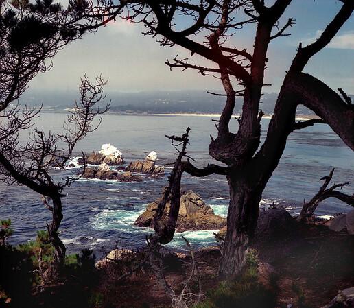 <center><h2>'Monterey Bay View'</h2>Pacific Grove, CA <em>color</em></center>