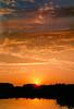 <center><h2>'Swani's Sunset'</h2> Encinitas, CA</center>