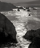 <center><h2>'Shoreline at Point Lobos'</h2>Point Lobos State Park, CA</center>