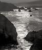 <center><h2>'Shoreline at Point Lobos'</h2>Point Lobos State Park, CA</center>
