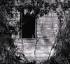 <center><h2>' Abandon Farm #6 '</h2>Mount Carmel, UT</center>