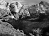 <center><h2>' Morning Light '</h2>Red Rock Canyon, AZ</center>