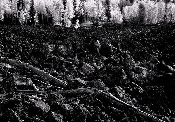 <center><h2>'Aspens on Lava '</h2>   <em>Monochrome</em> Navaho Lake, UT</center>
