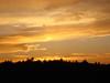 K0036-NY Sunset1185