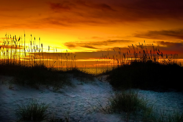 """<center><h2>'Sunrise'</h2>   St Augustine Beach, FL   A Limiited edition of 50  11""""x14"""" image on 13""""x19"""" paper</center>"""