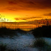 "<center><h2>'Sunrise'</h2>   St Augustine Beach, FL   A Limiited edition of 50  11""x14"" image on 13""x19"" paper</center>"