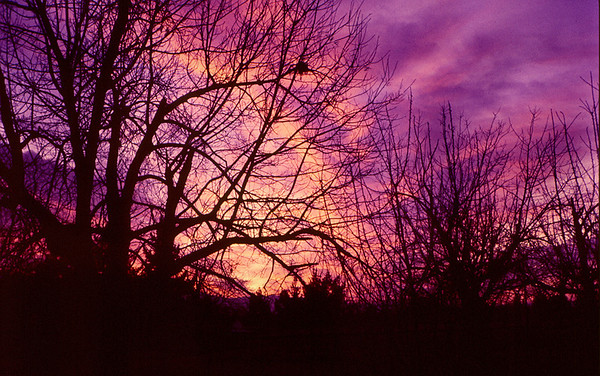 <center><h2>'Winter Sunset'</h2> St Charles, MO</center>