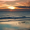 <center><h2>'Morning Feeding'</h2> St Augustine Beach, FL  </center>