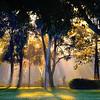 "<center><h2>'Garden Morn'</h2> Sarasota, Florida  An Open Edition Matted 16""x 20""  Luster  paper (12mil)  ©2014 R. Gallet  </center>"