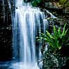 <center><h2>'Tropical Falls'</h2> San Diego, CA  Open edition </center>