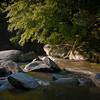 <center><h2>'Broad River Morning'</h2> Lake Lure, NC  </center>