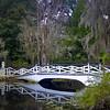 "<center><h2>' Wetland Bridge'</h2> South Carolina  12""x16"", Luster paper (12 mil) limited edition of 50</center>"