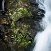 "<center><h2>' Island in the Falls '</h2> Amicacola Falls,  Dawsonville, Georgia  12""x16"" on 13""x19""  Premium Luster Photo Paper Edition of 25</center>"