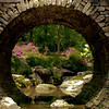 "<center><h2>""Full Moon Bridge""</h2>   University of Arkansas Gardens Hot Springs, AR  12""x14"" on 13""x19"" Luster Paper"