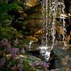 """<center><h2>""""Azalia Grotto""""</h2>   University of Arkansas Gardens Hot Springs, AR  12""""x14"""" on 13""""x19"""" Luster Paper"""