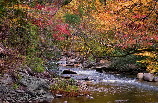 <center><h2>'Highlands River in Fall'</h2>  Highlands, NC </center>