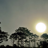 """<center><h2>' Foggy Sunrise '</h2> Rookery Bay Reserve Marco Island, Florida  Mated 16""""x20"""" on Photo Luster paper (12 mil) © R.Gallet 2014</center>"""