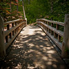 "<center><h2>""Forest Bridge""</h2>   University of Arkansas Gardens Hot Springs, AR  12""x14"" on 13""x19"" Luster Paper"