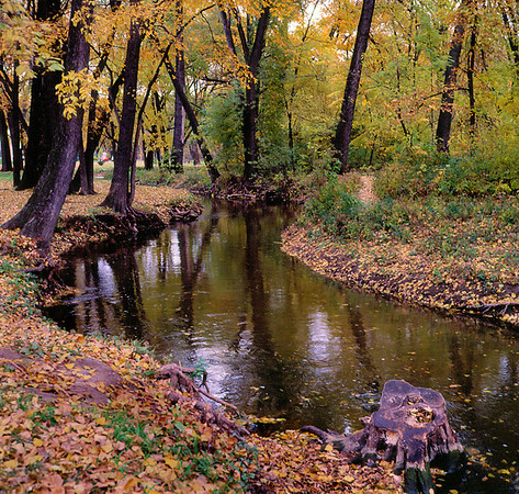 <center><h2>'Minnehaha Creek' </h2>North Minneapolis, MN  </center>