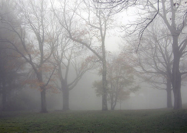 <center><h2>'Autumn Morning Fog'</h2>   Blowing Rock, NC</center>