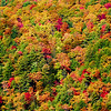 <center><h2>'Blue Ridge Autumn'</h2>   Highlands, NC</center>