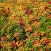 <center><h2>'Blue Ridge Autumn'</h2>   Highlands, NC</center>