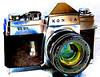 cameras (Home; 2009-05-24)