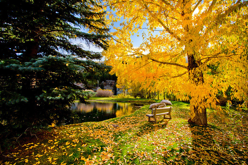 Solitude at Holland Pond in Eagle-Vail