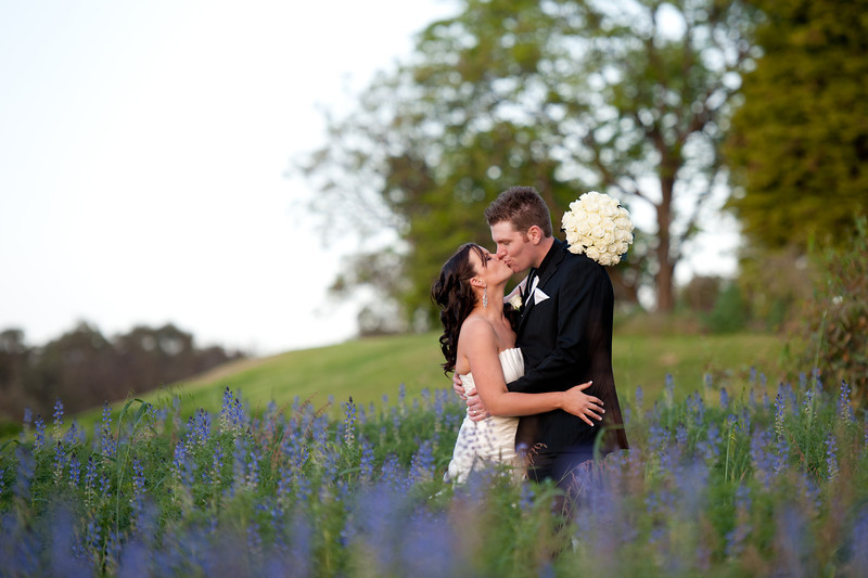 Wedding Photographer Perth Spring purple flower field
